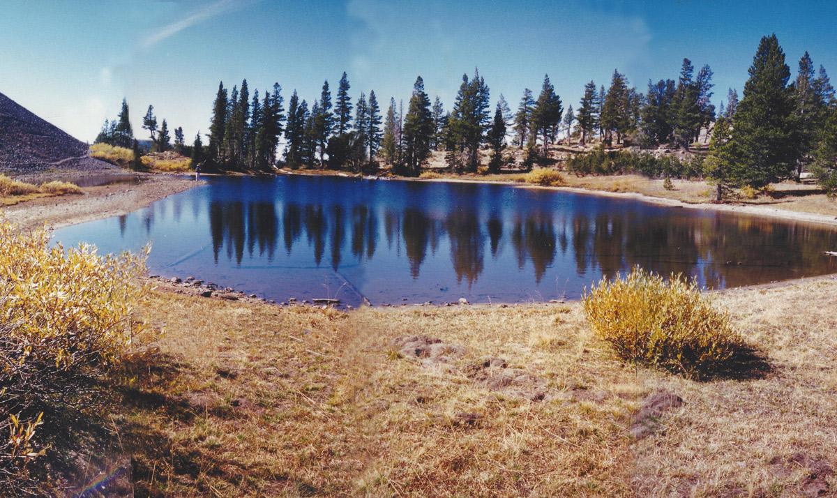 Dorothy Lake nude 465