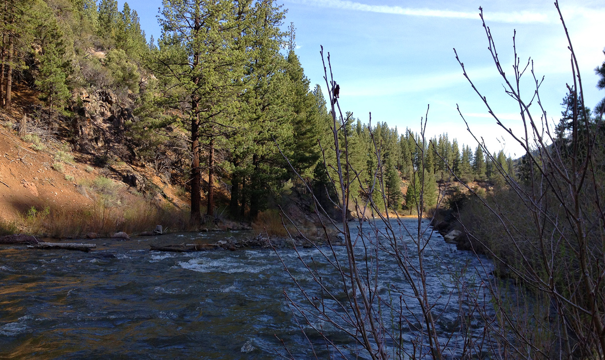 East fork carson river alpine county for The carson